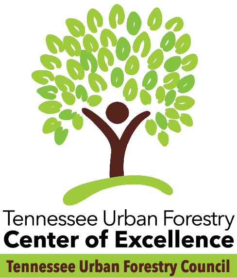 TUFC Center of Excellence