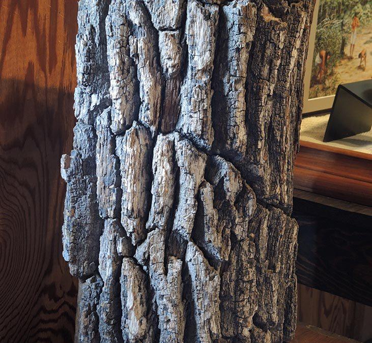 Chickasaw Treaty Oak