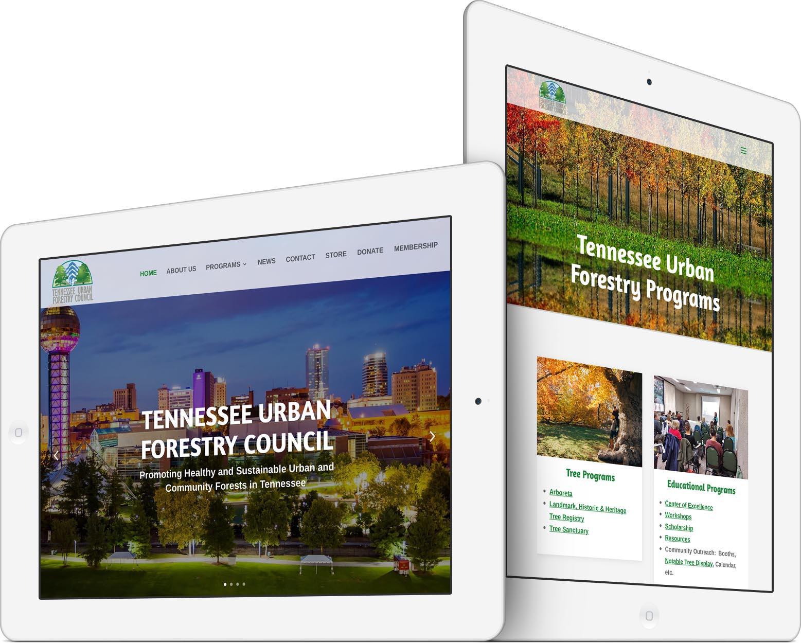 New Responsive TUFC Website