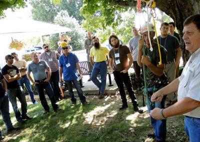 Tree Climb Workshop