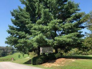 Cane Creek Arboretum