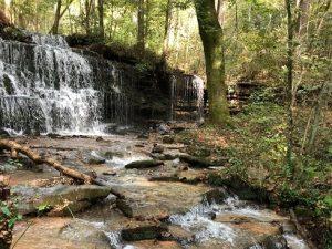 City Lake Natural Area Arboretum