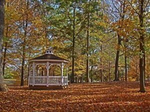 Ridgetop Station Park Arboretum