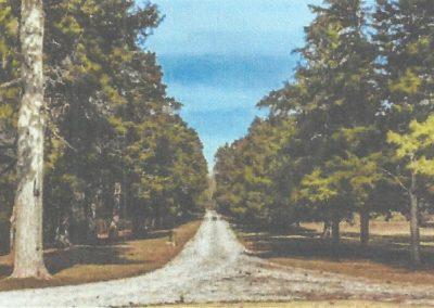Orion Hill Cedars of Arlington