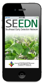 Pest Detector