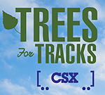 Trees for Tracks